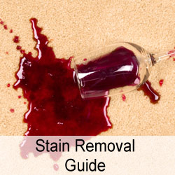 Stain-Removal-Guide