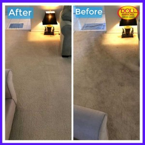 gallery Carpet-Cleaning1