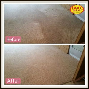 gallery Carpet-Cleaning4