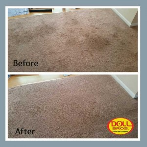 gallery Carpet-Cleaning6